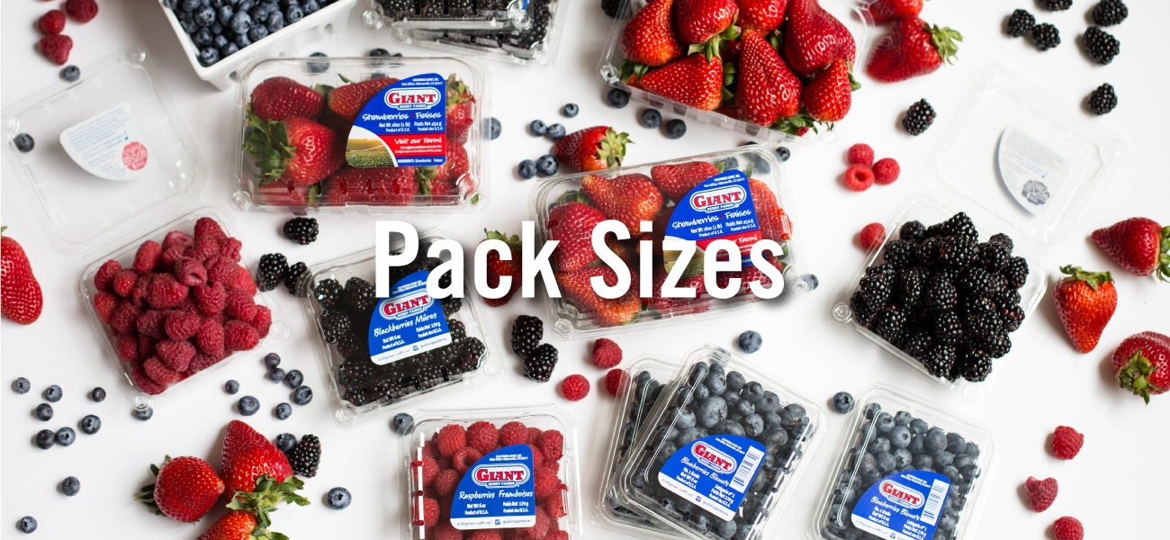 Pack Sizes